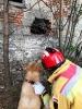 07-10.05.2019 Warsztaty doskonaląco- unifikacyjne dla instruktorów psów ratowniczych (4)