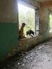 07-10.05.2019 Warsztaty doskonaląco- unifikacyjne dla instruktorów psów ratowniczych (7)
