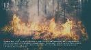 13.03.2020 Stop Pożarom traw KG PSP  (18)