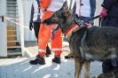 15-19.10.2019 Egzaminy psów Nowy Sącz  (13)