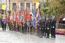 17.05.2019 Wojewódzkie obchody Dnia Strażaka Wadowice (43)