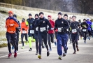 18.03.2018 Polmaraton Marzanny (19)