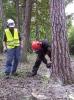 20-24.05.2019 Instruktorzy ścinki drzew  (2)