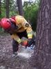 20-24.05.2019 Instruktorzy ścinki drzew  (3)