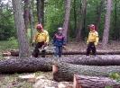 20-24.05.2019 Instruktorzy ścinki drzew  (4)