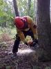 20-24.05.2019 Instruktorzy ścinki drzew  (5)