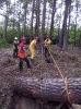 20-24.05.2019 Instruktorzy ścinki drzew  (7)