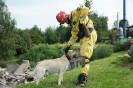 21-24.07.2020 Egzaminy psów Nowy Sącz (10)