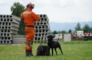 21-24.07.2020 Egzaminy psów Nowy Sącz (17)