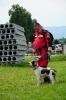 21-24.07.2020 Egzaminy psów Nowy Sącz (30)