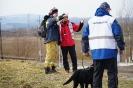 4-8 marca 2019 Nowy Sącz egzaminy dla psów  (11)
