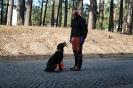9-11.09.2020 Egzaminy psów - Żagań (11)