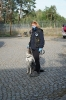 9-11.09.2020 Egzaminy psów - Żagań (1)