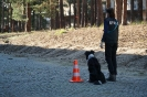 9-11.09.2020 Egzaminy psów - Żagań (28)