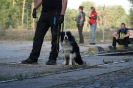 9-11.09.2020 Egzaminy psów - Żagań (34)